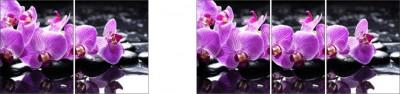 Фотопечать Орхидея Сиреневая